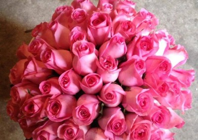 2.Hot Pink Roses