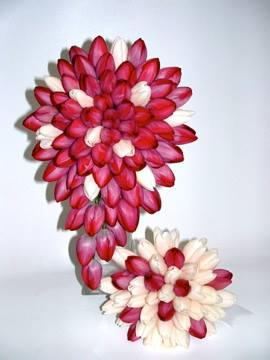 8. Tulips